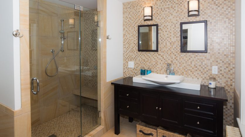 Master ensuite bathroom walk-in shower