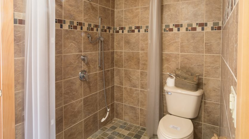 Main level full bath with walk in shower